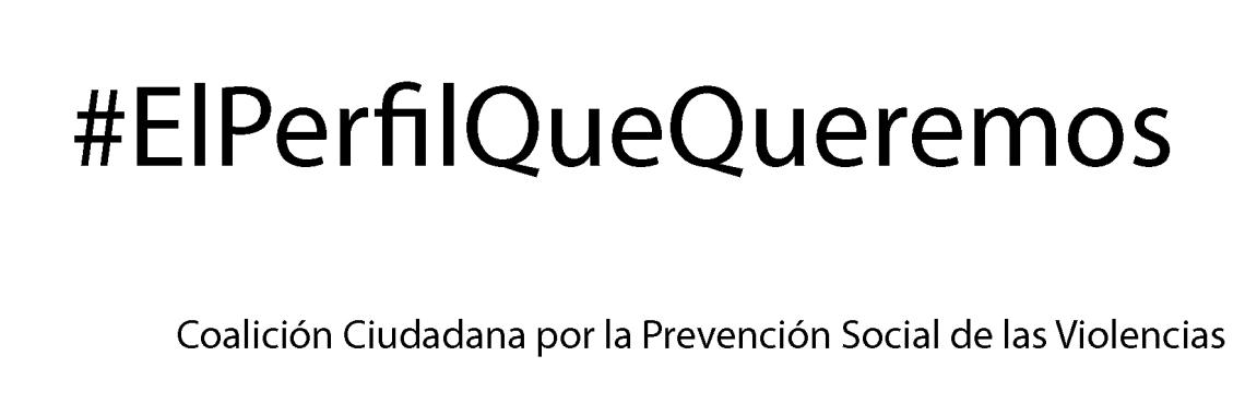 el_perfil_que_queremos